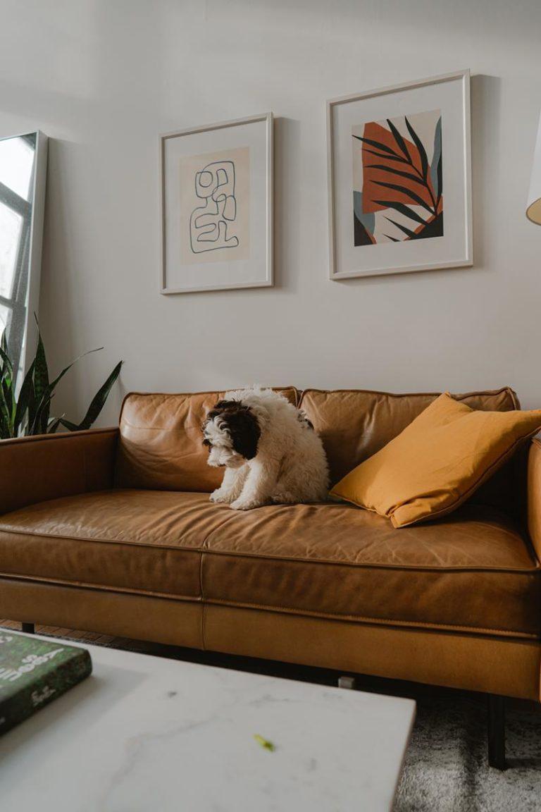 Jakich zasad powinniśmy pilnować przy samodzielnym projektowaniu wnętrza mieszkania?